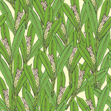 Seamless pattern with turmeric. Medical botanical blooming plant. hand drawn green texture. Royalty Free Stock Image