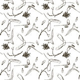 Seamless pattern with twigs, seeds and acorns Stock Photo