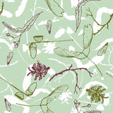 Seamless pattern with twigs, seeds and acorns Stock Image