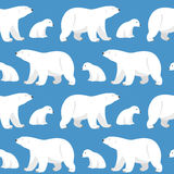 Seamless pattern with two polar bears, she-bear and teddy bear. Vector seamless pattern with two polar bears, she-bear and teddy bear on blue background Royalty Free Stock Image