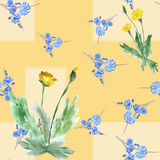 Seamless pattern of two yellow dandelion wild small blue flowers and bouquet on a beige background. Watercolor. royalty free stock image