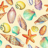 Seamless pattern with underwater life objects, isolated on yellow background. Marine design-shell, sea star.  Watercolor hand draw Stock Photos