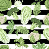 Seamless pattern with a variety cabbages on a white and black background Royalty Free Stock Photos