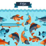 Seamless pattern with various fish. Background made without clipping mask. Easy to use for backdrop, textile, wrapping Stock Images