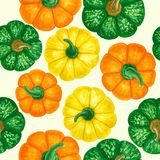 Pumpkin pattern royalty free stock image