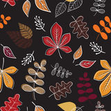 Seamless pattern. Vector background with fall leaves. Stock Image