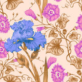 Seamless pattern. Vector seamless background with irises and bindweed. Design for fabrics, textiles, paper, wallpaper, web. Vintage style Royalty Free Stock Photography