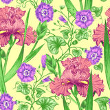 Seamless pattern. Vector seamless background with irises. Design for fabrics, textiles, paper, wallpaper, web. Vintage style Stock Images