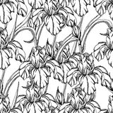 Seamless pattern.Vector decorative of iris flowers Stock Image