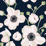 Seamless pattern with anemone on dark background. stock illustration