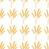 Seamless pattern. Vector illustration. Agriculture wheat Background vector Illustration design stock illustration