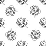 Seamless pattern vector Illustration of beautiful rose, drawing spring flower isolated on white background.  royalty free illustration