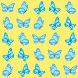 Seamless pattern. Vector illustration of butterfly on yellow background. Royalty Free Stock Images
