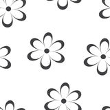 Seamless pattern. Vector illustration with flowers. Stock Photography