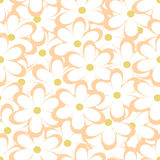 Seamless pattern. Vector illustration with flowers. Vintage floral print. Field of cute daisies. Textile design with chamomiles on white background. Spring or Stock Images