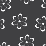 Seamless pattern. Vector illustration with flowers. Vintage floral print. Stock Photos