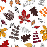 Seamless pattern. Vector pattern with fall leaves on white background. Stock Photo