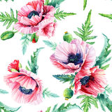 Seamless pattern of vector watercolor pink poppies. vector illustration