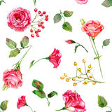 Seamless pattern of vector watercolor red roses. Royalty Free Stock Images