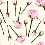 Seamless pattern of vector watercolor style pink bud of roses. Illustration of flowers. Can be used for gift wrapping paper, birthday, mother`s day and so on royalty free illustration