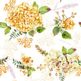Seamless pattern. Vector watercolor yellow hydrangea, lavender. Stock Photography