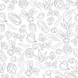 Seamless Pattern with vegetables. Hand drawn Seamless Pattern with vegetables Royalty Free Stock Photo