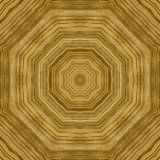 Seamless pattern, veneer zebrano Royalty Free Stock Photography