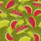 Seamless pattern with Venus Flytrap or Dionaea muscipula on the dark green background. Stock Photo