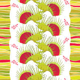 Seamless pattern with Venus Flytrap or Dionaea muscipula on the white background with stripes. Stock Image