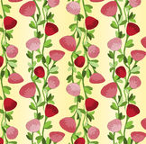 Seamless pattern with vertical lines of red roses Stock Images