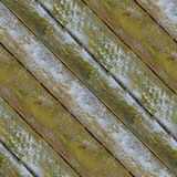Seamless pattern of textured wooden plank wall with moss. Seamless pattern of very old wooden plank wall with moss for design and matte painting Royalty Free Stock Photos