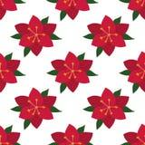 Seamless Pattern Vinous Lily Stock Photos