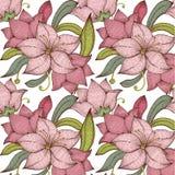 Seamless pattern vintage lily Stock Photography