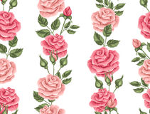 Seamless pattern with vintage roses. Decorative retro flowers.  Stock Photography