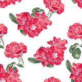 Seamless Pattern with Vintage Roses Stock Photography