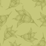 Seamless pattern with Vintage sketch flowers on olive paper Stock Images