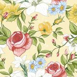 Seamless Pattern with Vintage Wildflowers Stock Photography