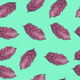 Seamless pattern with violet basil leaf on atTeal background. stock photo