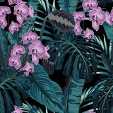 Seamless pattern, violet orchid flower and green blue exotic palm monster leaves on dark background. Vintage style stock illustration