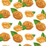 Seamless pattern with walnuts. Best for textile, wrapping paper. Vector illustration Stock Image