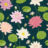 Seamless pattern with water lily. Collection decorative floral design elements. Royalty Free Stock Photos
