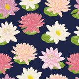 Seamless pattern with water lily. Collection decorative floral design elements. Flowers and leaves Royalty Free Stock Images