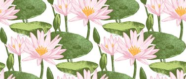 Seamless pattern with water lily flowers Royalty Free Stock Photos