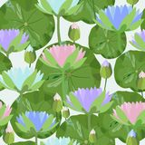 Seamless pattern with water lily flowers and leaves. Vector illustration. Stock Photo
