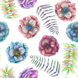 Seamless pattern with the watercolor anemone flowers, fern, leaves and branches. Hand drawn on a white background Royalty Free Stock Image