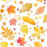 Seamless pattern with watercolor autumn leaves and splash. Royalty Free Stock Images