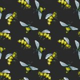 Seamless pattern with watercolor bees. Hand drawn isolated on a dark background Royalty Free Stock Photo