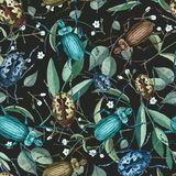 Seamless pattern with watercolor beetles ,branches and flowers stock image
