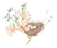 Seamless pattern of the watercolor bird nests on the tree branches, hand drawn on a white background Stock Photos