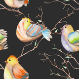 Seamless pattern of the watercolor birds on the branches, hand drawn on a dark background Stock Photo